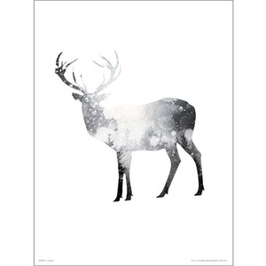 PDH01397 Deer Snow Tree (40x50)